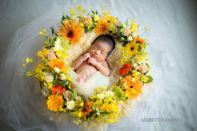 ニューボーンフォト ニューボーンフォト撮影 寺本真理 Fragrance of Flower